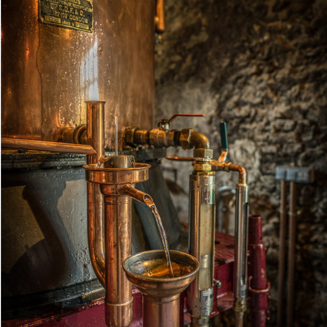 Cognac of Armagnac - Production